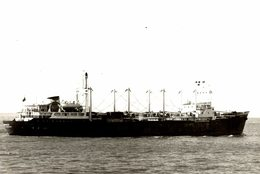 BARCO +- 14 * 10  CM BARCO BOAT Voilier - Schiffe