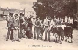 56 - Le Faouet - Un Coin De Foire (veaux Bovins) - Le Faouet