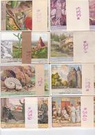 Chromos Liebig - 8 Séries De 6 Chromos - Lot 11 - Liebig
