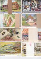 Chromos Liebig - 8 Séries De 6 Chromos - Lot  27 - Liebig