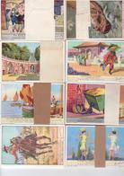 Chromos Liebig - 8 Séries De 6 Chromos - Lot  28 - Liebig