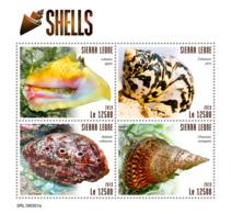 Sierra Leone 2019   Shells  S201903 - Sierra Leone (1961-...)