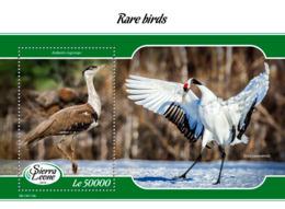 Sierra Leone 2019 Fauna Rare Birds   S201903 - Sierra Leone (1961-...)