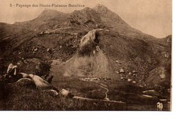 5. PAYSAGE DES HAUTS PLATEAUX BETSILEOS. - Madagascar