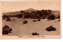 AMBABO. LA PALMERAIE ET LE MONT GOUDA. - Madagascar