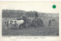 COTE D'OR - 21 - GRIGNON Près De MONTBARD - 235 Hab - Ecole Nationale D'agriculture - Fenaison - Gros Plan - France