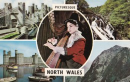 AM34 Picturesque North Wales - Multiview Postcard - Wales