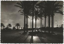 W3504 Tripoli - Tramonto Sunset Coucher / Non Viaggiata - Libia