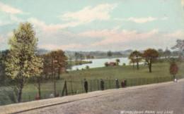 AO76 Wimbledon Park And Lake  - 1906 Postcard - London Suburbs
