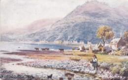 AO77 Bute, Killchallan Bay - 1906 Wimbush Postcard, Tuck Oilette - Bute