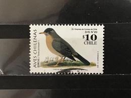 Chili / Chile - Vogels (10) 2002 - Chili