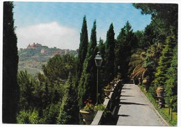00073  CASTEL GANDOLFO - Italia