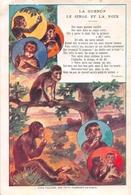"""Illustrateur - Fables De FLORIAN  - La Guenon , Le Singe Et La Noix  -  Carte Publicitaire """" Chicorée Williot """" - Illustrateurs & Photographes"""