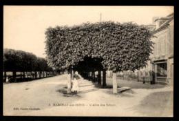 51 -  MARCILLY SUR SEINE (Marne) - L'Allée Des Tilleuls - France