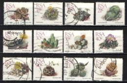 SUD AFRICA - 1988 - PIANTE GRASSE - SUCCULENTS - USATI - Usati