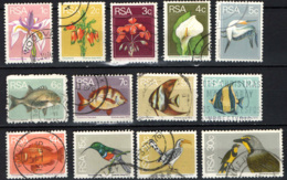 SUD AFRICA - 1974 - FLORA E FAUNA - USATI - Sud Africa (1961-...)