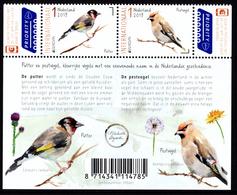"""NETHERLANDS/Nederland EUROPA 2019 """"National Birds"""" Set Of 2v** - 2019"""