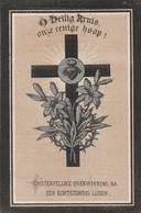 Sidonie Caroline Buyle-ledeberg 1850-st.amandsberg 1892 - Images Religieuses