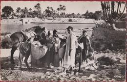 Tunesie Tunisia Tunisie Natives Scenes Et Types Gafsa Le Soir Au Puits Monde Arabe - Tunisie