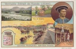 CHROMO IMAGE) LIEBIG  Colonie Francaise Indo Chine Française - Liebig