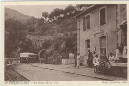 Lozere : St Frézal De Ventalon, La Gare, Belle Animation... - France