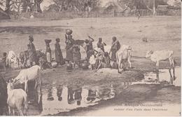 Afrique Occidentale. Femmes Autour D'un Point D'eau. Non écrite. Dos Blanc. Fortier. Tbe - Ansichtskarten