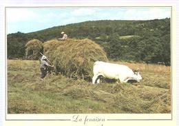 Agriculture Les Métiers D'antan La Fenaison - Cultures