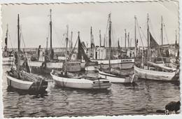 DAV :  Loire Atlantique : LA  TURBALLE :  Bateaux  De  Pêche Dans Le  Port  1965 - La Turballe