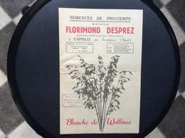 CATALOGUE FLORIMOND DESPREZ  Semences De Printemps  BLANCHE DE WATTINES  Capelle Par Templeuve  NORD.. - Garden
