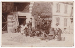TREBBIATRICE - TREBBIATURA - CONTADINI - FOTO CARTOLINA ORIGINALE - Mestieri