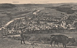 Diekirch , Vue Prise Du Herrenberg IV ,(boeuf , Vache ,labour ,charrue ,agriculture ) - Diekirch
