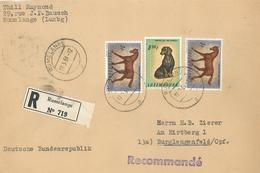 Pferd Hund Rumelange Tierschutz Protection R-Brief - Luxembourg