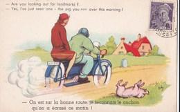 """Carte 1940 Signée .. """"on Est Sur La Bonne Route ...le Cochon Qu'on A écrasé Ce Matin"""" (moto,humour) - Pigs"""