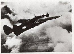 """Carte Photo - """"LA VEUVE NOIRE"""" Chasseur De Nuit""""  L'Aviation Alliée - Cliché P.P.L. - Aviation"""