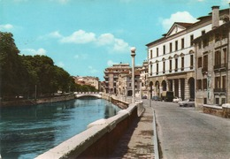 TREVISO-RIVIERA REGINA MARGHERITA-VIAGGIATA - F.G - Treviso