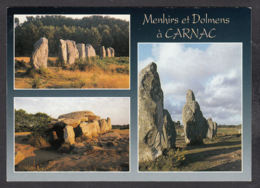 92070/ MEGALITHES, Carnac, Les Alignements De Kerlescan - Dolmen & Menhirs