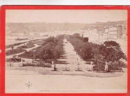 1870s GIACOMO BROGI: NAPOLI. VILLA MUNICIPALE GIA NAZIONALE E RIVIERA - OLD ALBUMINA FOTO 16x11cm ORIGINAL- BLEUP - Foto
