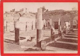 1870s GIACOMO BROGI: POMPEI. CASA DI POPIDIO AUGUSTANO DETTA DEL CITARISTA - OLD ALBUMINA FOTO 16x11cm ORIGINAL- BLEUP - Foto