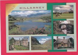 Modern Post Card Of Killarney, County Kerry, Ireland,X21. - Kerry