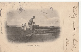 SENEGAL - Au Puits - Senegal
