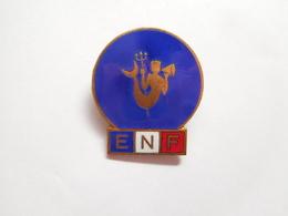 Broche En EGF ( No Pin's ) , ENF , Ecole De Natation Française ?? Jeunesse Sports Et Loisirs - Natation