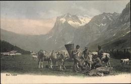 Cp Sur L'alpe, Bauern, Rinder, Weide, Gebirge - Métiers