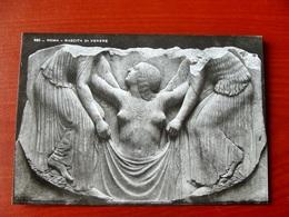 (FG.W41) ROMA - NASCITA DI VENERE (NV) - Sculture