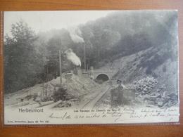CPA - Herbeumont - Les Travaux Du Chemin De Fer - Nels, Série 40 N° 201 - Herbeumont