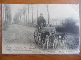 CPA - Libramont - Attelage De Chiens - D.V.D 10.810 Edition Hotel Duroy - Libramont-Chevigny