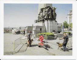 Brussel  Vlaamsvredesinstituut 1 - Monuments, édifices