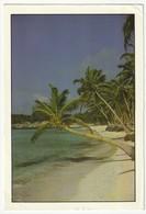 AK Dominikansiche Republik Punta Cana-111. Postalisch Gelaufen Nach Düsseldorf. 2 Scans. 15,8 X 10,8 Cm - Dominikanische Rep.