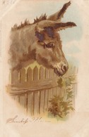 Portrait Of A Donkey , 1901 - Donkeys