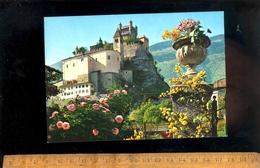 VALLE D'AOSTA : Castello Di St Pierre SAINT PIERRE - Italia