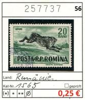 Rumänien - Roumanie - Romina - Rominia - Michel 1565 -  Oo Oblit. Used Gebruikt - - 1948-.... Repúblicas